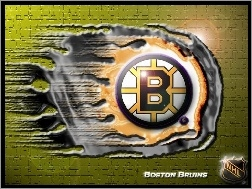 Boston Bruins, Drużyny, Logo, NHL